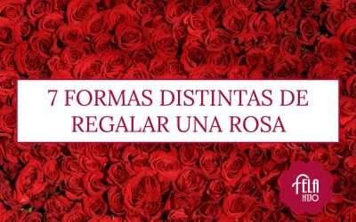 7 formas distintas de regalar una rosa