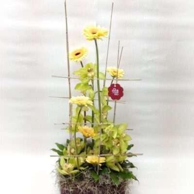 Flores para nacimientos - Modelo 6