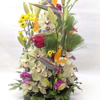 Flores para nacimientos - Modelo 13