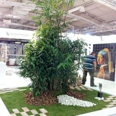 Plantas y decoración para ferias 2
