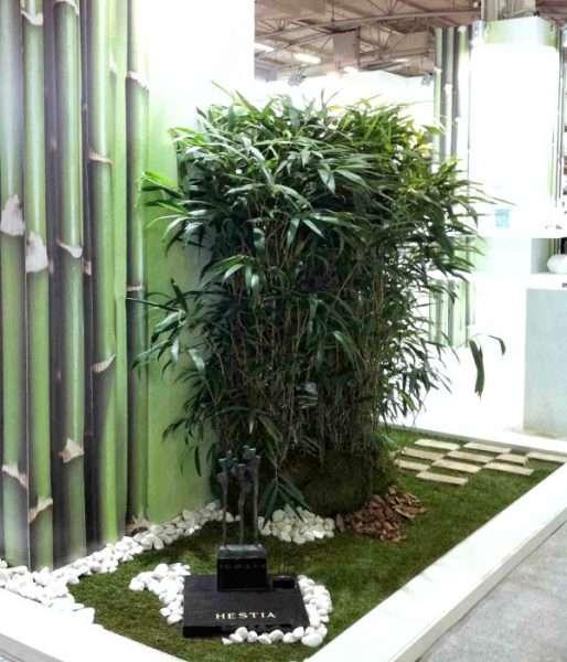 Plantas y decoración para ferias