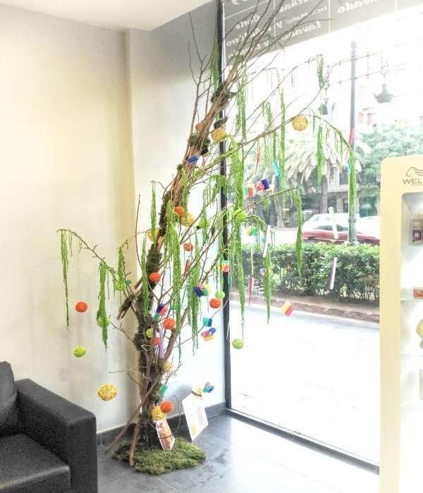 Plantas para oficinas y escaparates 3