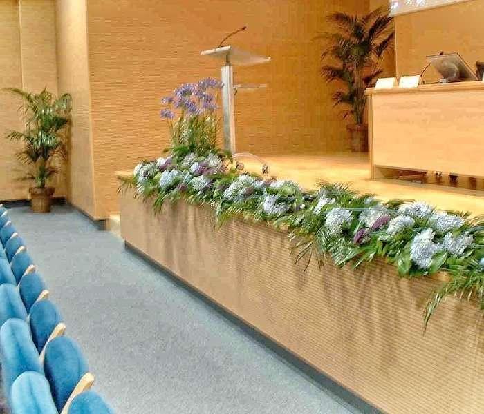 Plantas para eventos