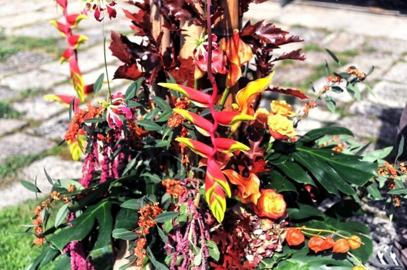 Flores de bienvenida 10