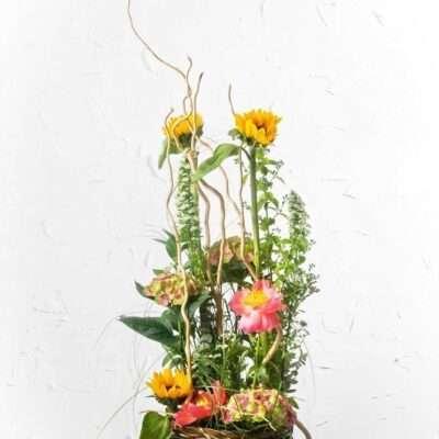 Flores de agradecimiento y regalo 17
