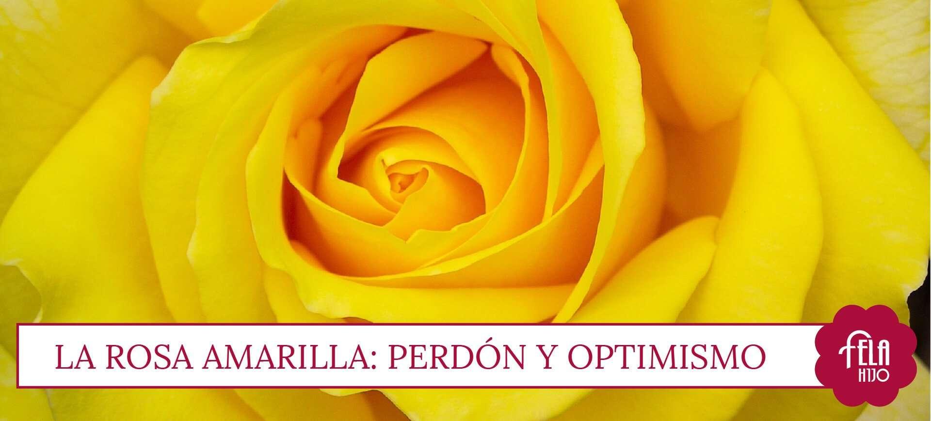 El Significado De Regalar Rosas Por San Valentín Flores Fela