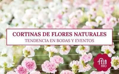 Cortinas de flores naturales para bodas y eventos