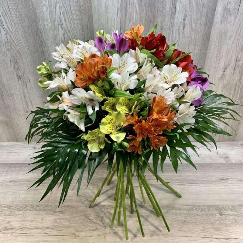 Alstroemeria o flor de la amistad en variedad de colores