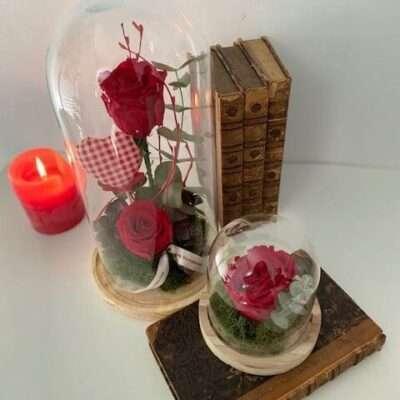 Cúpula de Rosas preservadas